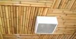 techo-tacuara