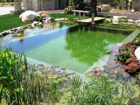 piscina ecologica - Piscinas Ecologicas