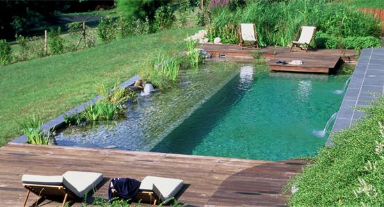 piscina-ecologica43.jpg